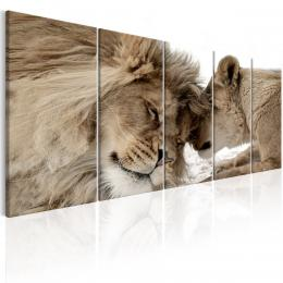 Murando DeLuxe Vícedílné obrazy - lev a lvíèe
