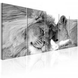 Murando DeLuxe Vícedílný obraz - lví láska