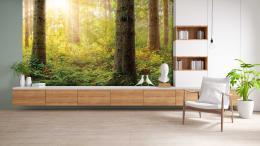 InSmile ® Tapeta Východ slunce - les Vel. (šíøka x výška)  144 x 105 cm - zvìtšit obrázek