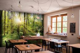 InSmile ® Tapeta les s východem slunce Vel. (šíøka x výška)  144 x 105 cm - zvìtšit obrázek