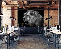 InSmile ® Tapeta Èernobílý lev Vel. (šíøka x výška)  144 x 105 cm