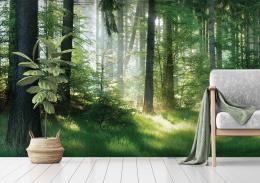 InSmile ® Tapeta Lesní pohoda Vel. (šíøka x výška)  144 x 105 cm - zvìtšit obrázek