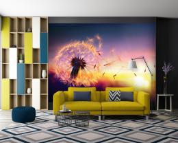 InSmile ® Tapeta Západ slunce a pampeliška Vel. (šíøka x výška)  144 x 105 cm - zvìtšit obrázek