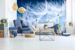 InSmile ® Tapeta pampelišky na modré Vel. (šíøka x výška)  144 x 105 cm - zvìtšit obrázek