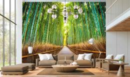 InSmile ® Tapeta bambusová stezka Vel. (šíøka x výška)  144 x 105 cm - zvìtšit obrázek