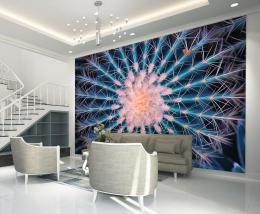 InSmile ® Tapeta Kaktus Vel. (šíøka x výška)  144 x 105 cm