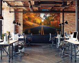 InSmile ® Tapeta Cesta v lese na podzim Vel. (šíøka x výška)  144 x 105 cm - zvìtšit obrázek