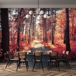 InSmile ® Tapeta èervený podzim v lese Vel. (šíøka x výška)  144 x 105 cm - zvìtšit obrázek