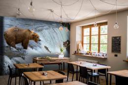 InSmile ® Tapeta Medvìdi na lovu Vel. (šíøka x výška)  144 x 105 cm - zvìtšit obrázek