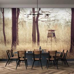 InSmile ® Tapeta Posed v lese Vel. (šíøka x výška)  144 x 105 cm - zvìtšit obrázek
