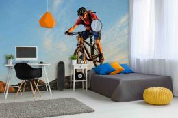 InSmile ® Tapeta Cyklista Vel. (šíøka x výška)  144 x 105 cm - zvìtšit obrázek