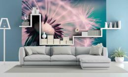 InSmile ® Tapeta Pampeliška pastelová Vel. (šíøka x výška)  144 x 105 cm - zvìtšit obrázek