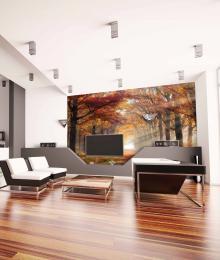 InSmile ® Tapeta Podzim Vel. (šíøka x výška)  144 x 105 cm