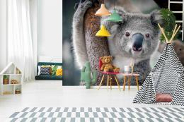 InSmile ® Fototapeta Koala Vel. (šíøka x výška)  144 x 105 cm - zvìtšit obrázek