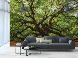 InSmile ® Fototapeta Strom života Vel. (šíøka x výška)  144 x 105 cm