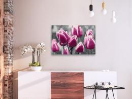 Murando DeLuxe Malování podle èísel - Pole tulipánù