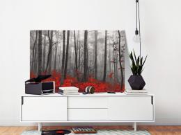 Murando DeLuxe Nahé stromy Velikost  60x40 cm