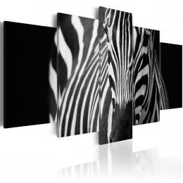 Murando DeLuxe Obraz vícedílný Zebra