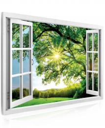 InSmile ® Obraz - okno obrovský strom  - zvìtšit obrázek
