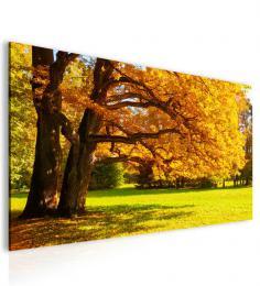 InSmile ® Obraz podzimní atmosféra žlutý