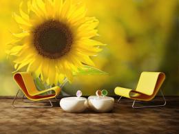Murando DeLuxe Tapeta - záøící sluneènice  - zvìtšit obrázek