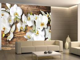 Murando DeLuxe Tapeta bílá orchidej na døevì