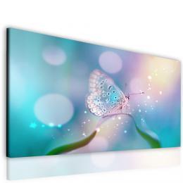 InSmile ® Obraz motýl pastelový  - zvìtšit obrázek