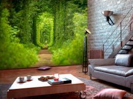 Murando DeLuxe Tapeta Zelený tunel  - zvìtšit obrázek