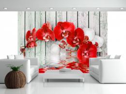 Murando DeLuxe Tapeta Èervená orchidej na døevì