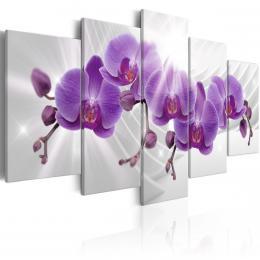 Murando DeLuxe Obraz - fialová orchidej