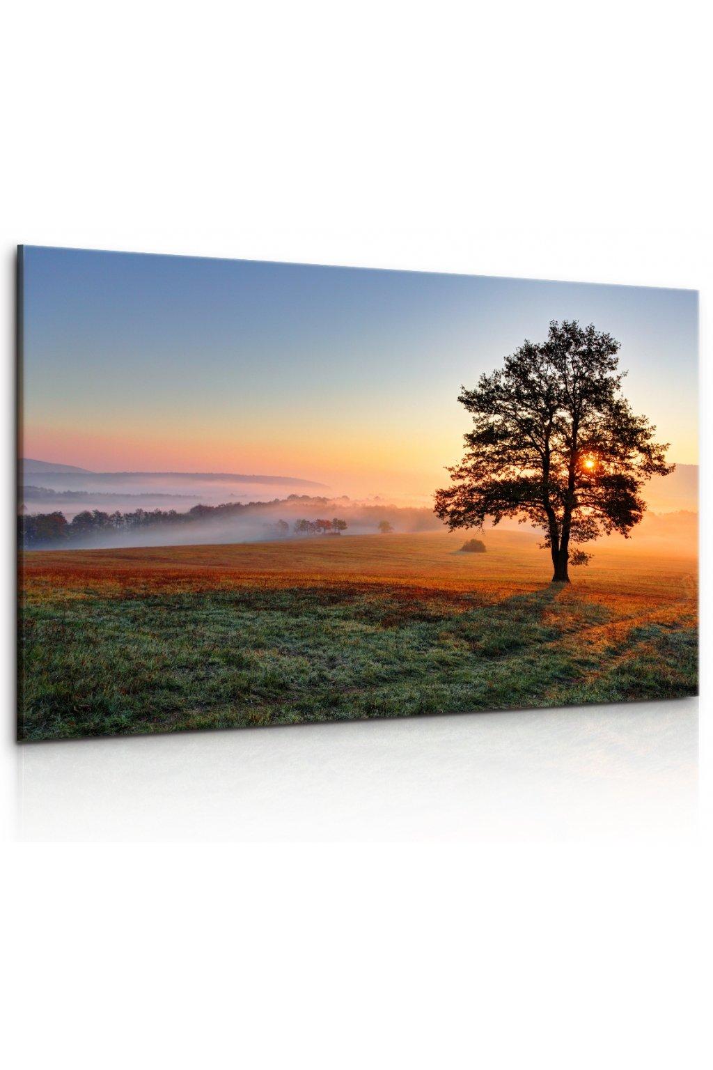 Malvis Obraz - ranní jinovatka  - zvìtšit obrázek