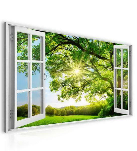 Malvis Obraz okno obrovský strom  - zvìtšit obrázek