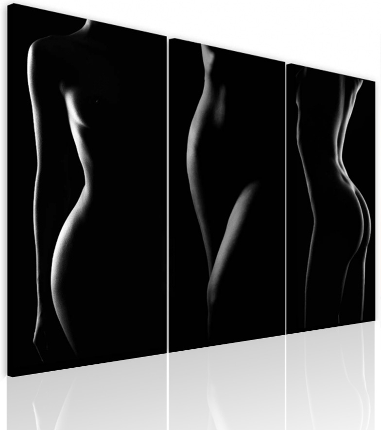 Malvis Obraz krása ženského tìla  - zvìtšit obrázek