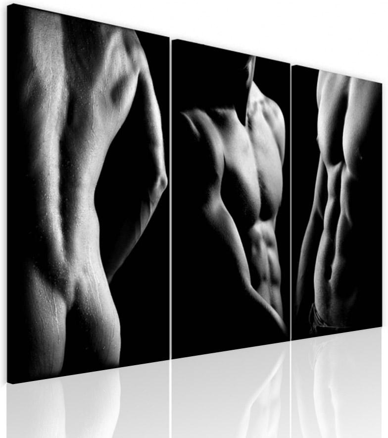 Malvis Obraz krása mužského tìla  - zvìtšit obrázek
