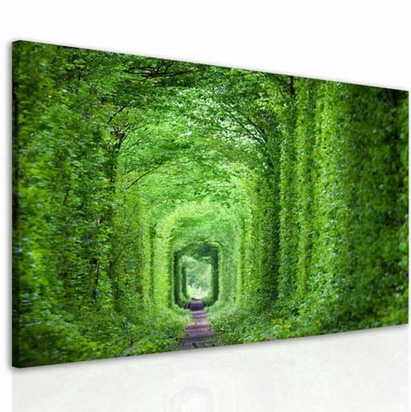 Malvis Obraz zelený tunel  - zvìtšit obrázek