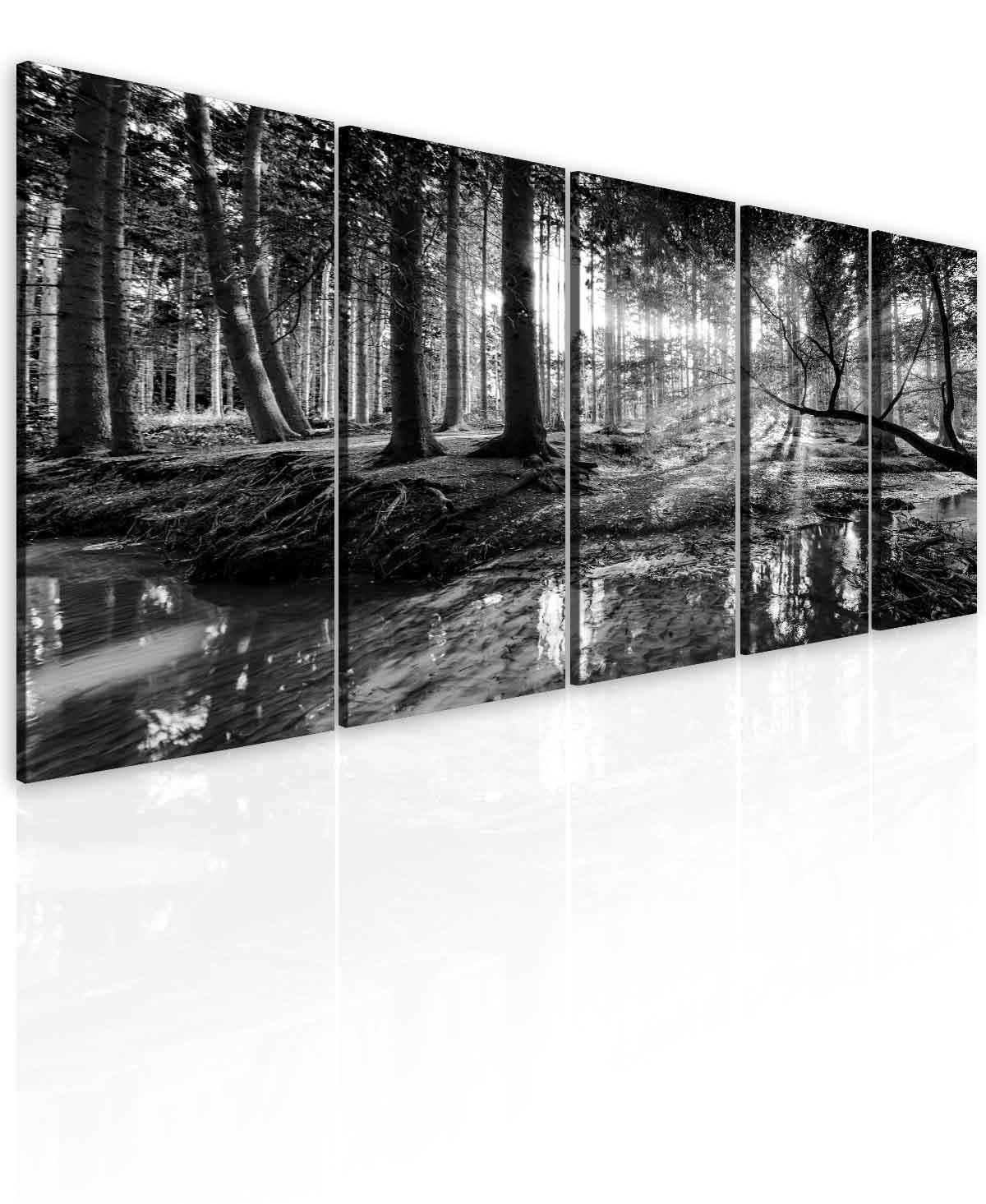 Malvis Obraz èernobílá pohoda lesa  - zvìtšit obrázek