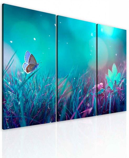 Malvis Obraz motýlí krása  - zvìtšit obrázek