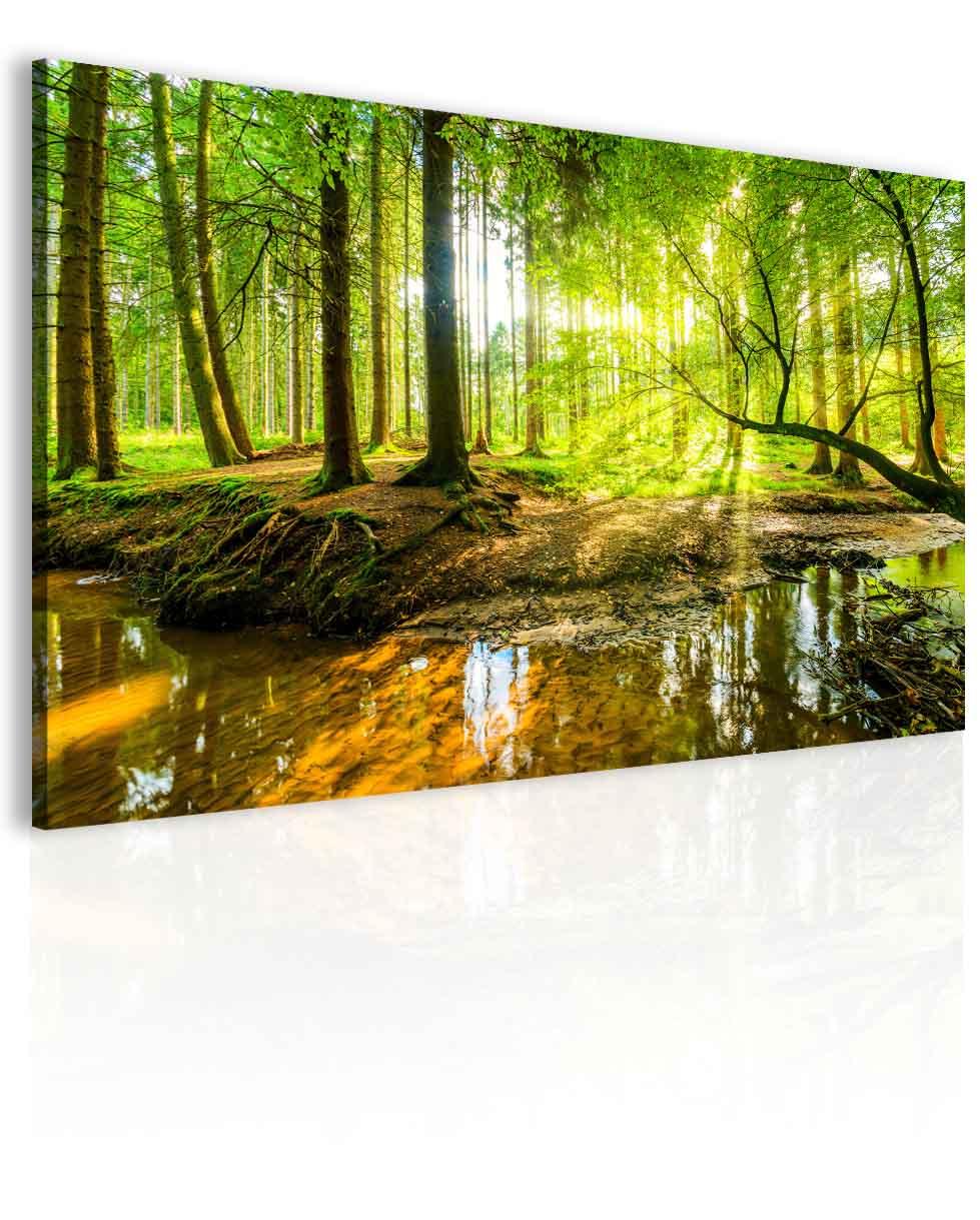 Malvis Obraz pohoda v lese  - zvìtšit obrázek