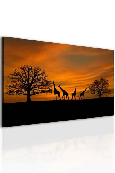 Malvis Obraz západ slunce na safari  - zvìtšit obrázek
