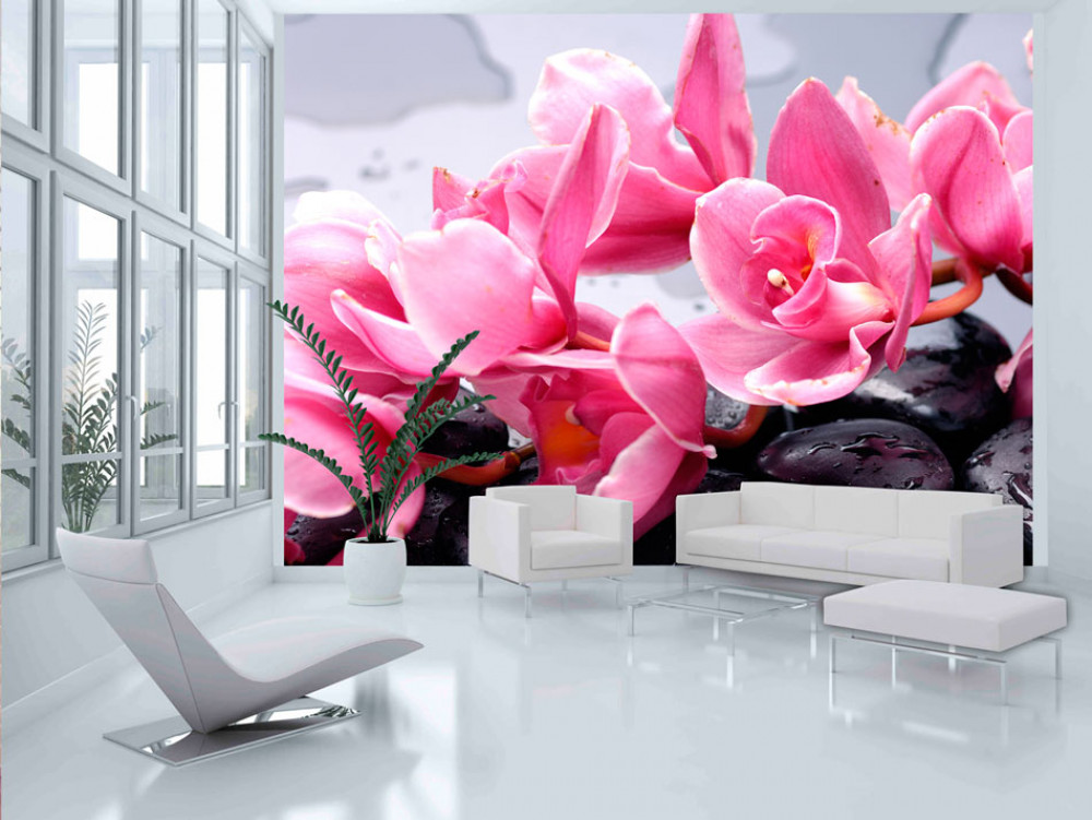 Murando DeLuxe Orchidej na lávových kamenech  - zvìtšit obrázek