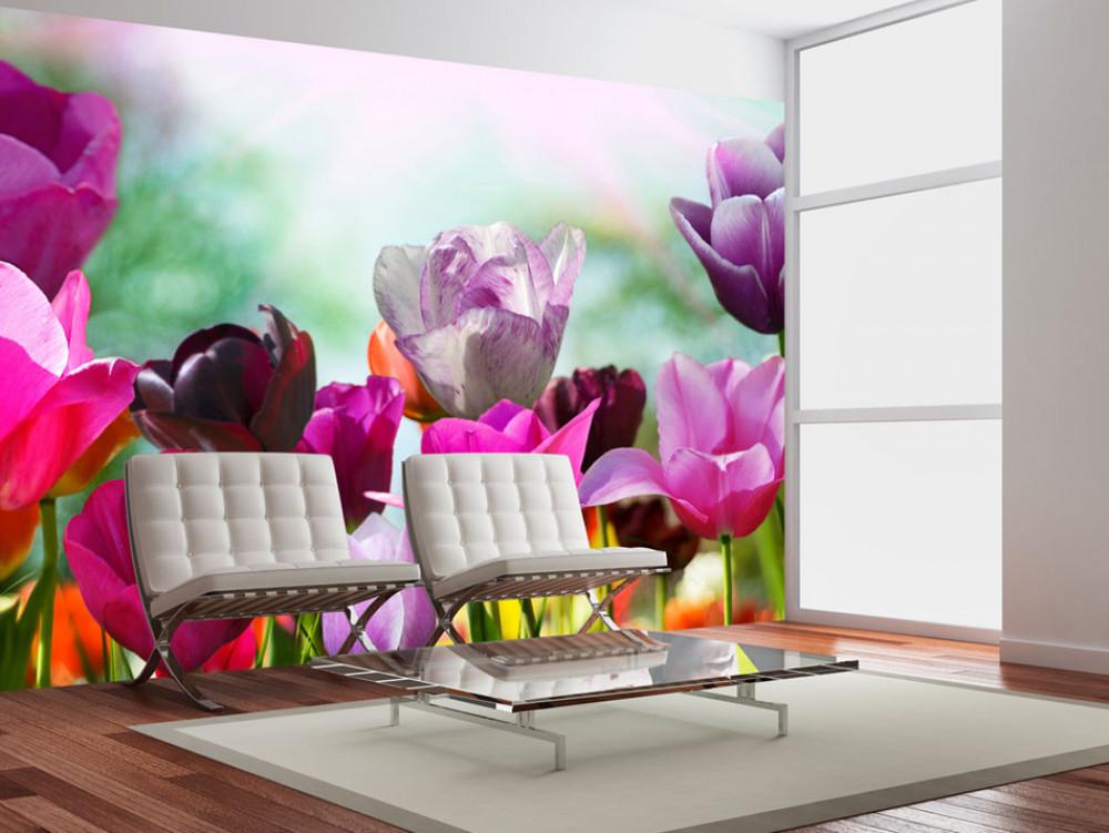 Murando DeLuxe Fototapeta jarní tulipány  - zvìtšit obrázek