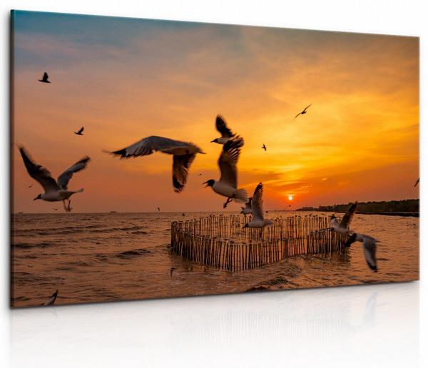Malvis Obraz Ptáci pøi západu  - zvìtšit obrázek