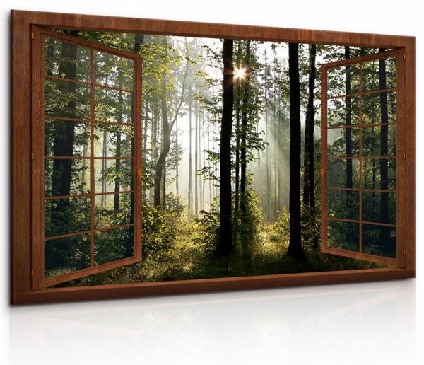 Malvis Okno v ranním lese  - zvìtšit obrázek