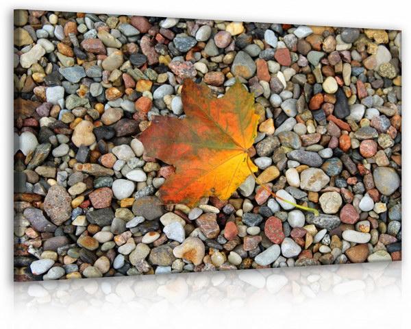 Malvis Obraz list na kamenech  - zvìtšit obrázek