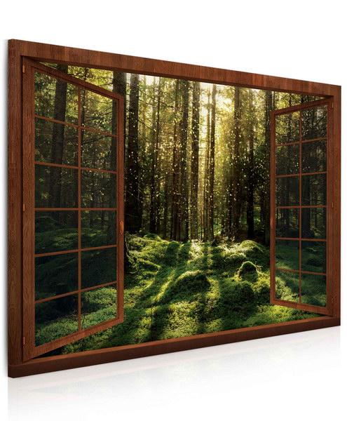 Malvis Obraz Kouzelný mechový les  - zvìtšit obrázek