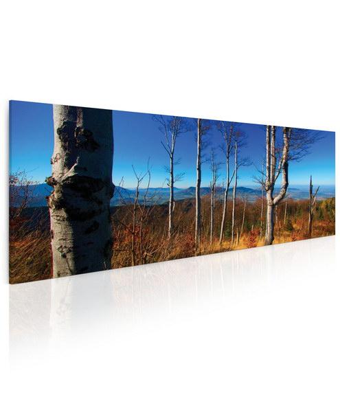 Malvis Obraz Cestou z Lysé hory  - zvìtšit obrázek