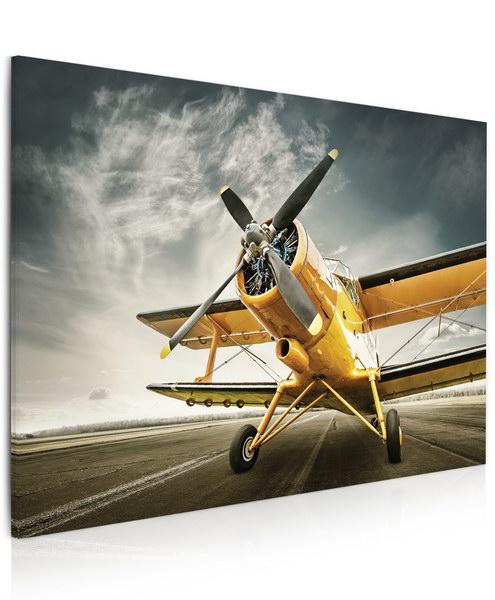 Malvis Obraz Žluté letadlo  - zvìtšit obrázek