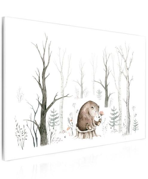 Malvis Obraz malovaný medvídek  - zvìtšit obrázek