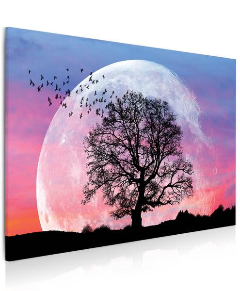 Malvis Obraz Mìsíc a strom  - zvìtšit obrázek