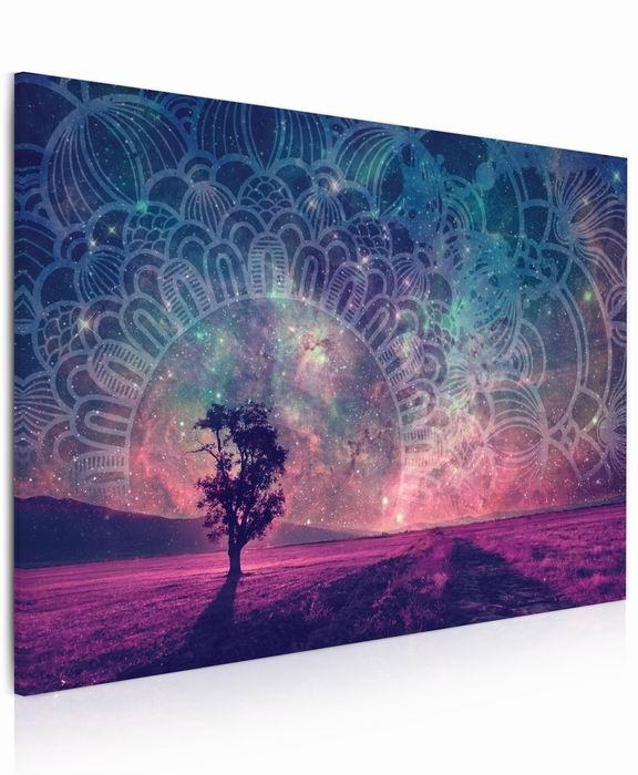 Malvis Obraz Mandala na hvìzdném nebi  - zvìtšit obrázek